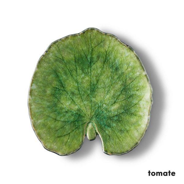 Alchemille-Tomate