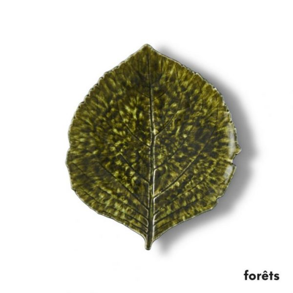 Hydragea Forets