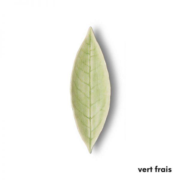Laurel Vert Frais (1)